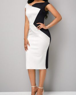 Block Boat Neck Zipper Back Sheath Dresses