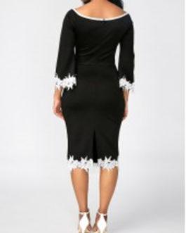 Scoop Neck Lace Panel Sheath Dress