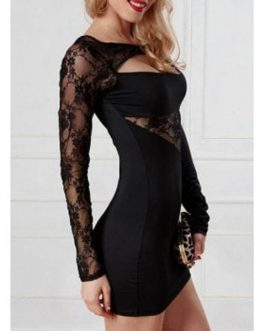Trendy Long Sleeves Lace Splice Hollow Out Dresses