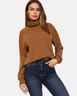 Brown High Neck Solid Pullover Plain Sweatshirt