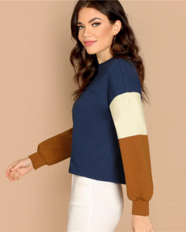 Multicolor Color Block Minimalist Sweatshirts