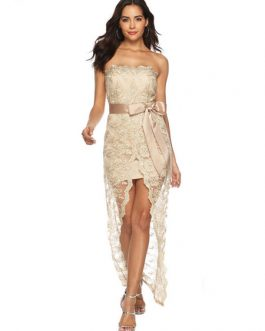 Lace Bodycon Dress Strapless Sexy Party Dress