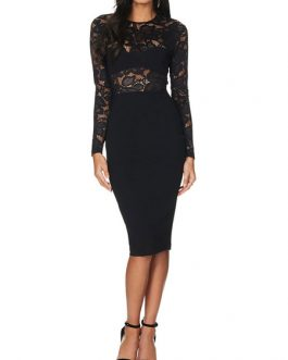 Long Sleeve Bodycon Dress Lace Crew neck Shaping Sexy Party Dress