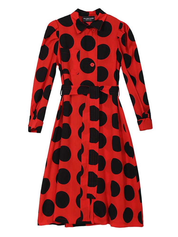 Long sleeved Turn Down Collar Dresses4
