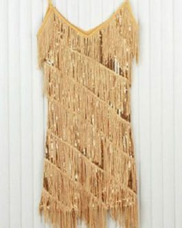 Sequin Party Dress 1920s Flapper Glitter Fringe Night Dress Sexy Club Dress