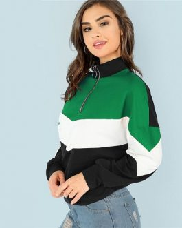 Stand Collar Sweatshirt 2018 Autumn Women Sweatshirts