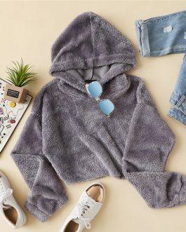 Teddy Hoodie Sweatshirt Autumn Casual Fashion Women Pullovers Sweatshirts