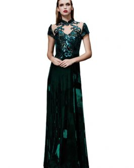 Velvet Evening Dress Illusion Sequin Mother's Dress Dark Green Stand Collar Short Sleeve A Line Floor Length Wedding Guest Dresses