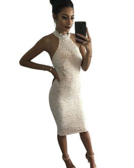 Wedding Party Dress White Lace Birthday Dress Halter Backless Bodycon Dress