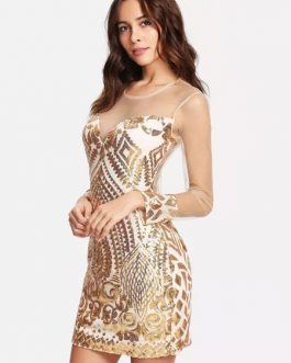 Women Sequin Dress Long Sheer Sleeves Luxury Zip Back Bodycon Party Dress