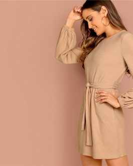 Camel Knot Front Lantern Long Sleeve Belted Solid Mini Dress