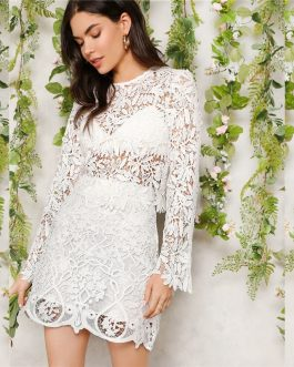 Romantic White Sheer Guipure Lace Skinny Top