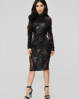 Sequin Long Sleeve Backless Sheer Sexy Bodycon Dress