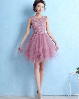 Cocktail Lace Applique Prom Homecoming Dress