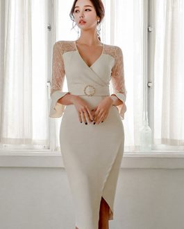 V Neck Lace Shaping Party Dress