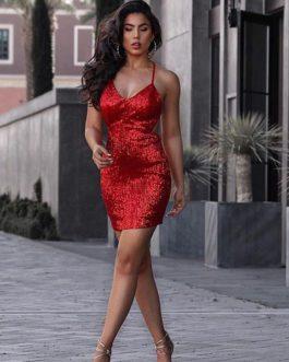 Women Celebrity Sexy Bodycon Party Dress