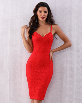 Women Runway Party Sexy Bodycon Midi Lace Club Dress