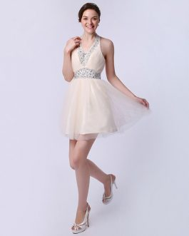 Short Graduation Dress with Beautiful Halter A-line Tulle Ruched