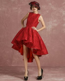 Short Lace Cocktail Pleated A Line High Low Homecoming Prom  Dress