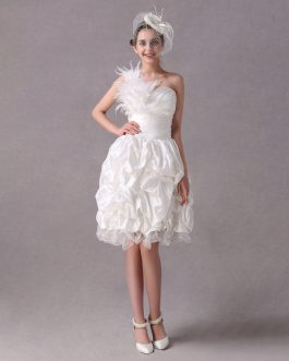 A-line One-Shoulder Feather Taffeta Organza Prom Dress