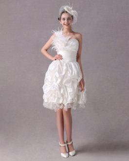 A-line One-Shoulder Feather Taffeta Organza Prom Dress