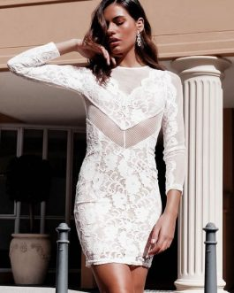 Women Long Sleeve Round Neck Backless Sheer Insert Lace Dress