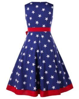 Plus Size American Flag Vintage Dress
