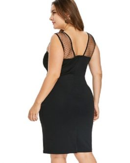 Plus Size Embroidered Mesh Insert Bodycon Dress
