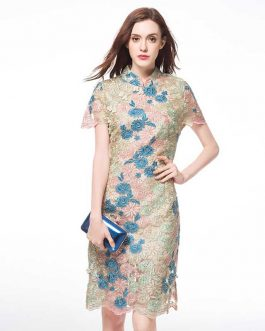 Women Elegant print lace embroidery Plus size party  Dress