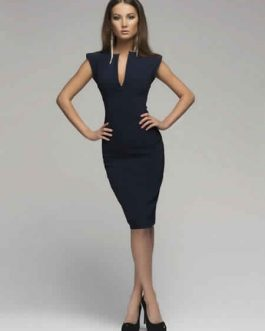 Women Plunging Sleeveless Bodycon Dress