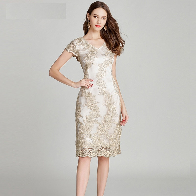 Women Plus size lace embroidery Pencil Dress