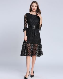 Women lace slim Mermaid female Sweet Trumpet casual Knee-Length dress