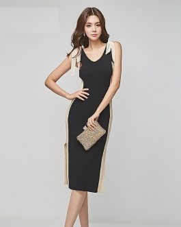 Women sexy Vestidos Office work Lady Casual bodycon dress