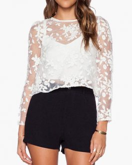 Women Long Sleeves Embroidered Semi-Sheer Crop Top