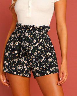 Women Zipper Fly High Waist Casual Shorts