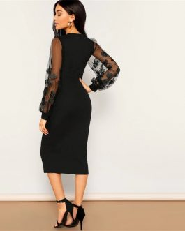 Black Embroidery Mesh Insert Stretchy Bishop Sleeve Fitted Bodycon Dress
