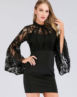 Lace Long Sleeves High Collar Mini Dress