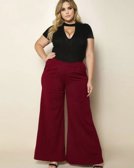 Plus Size Pants Burgundy Wide Leg Long Pants