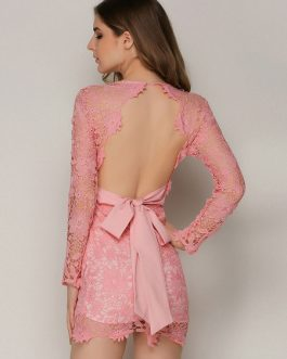 Sexy Lace Plunging Backless Mini Dress