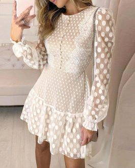Transparent Long Sleeve Polka Dot Mini Dress