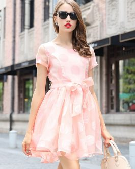 Women Bows Sash Polka Dot Flared Dress