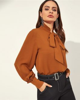 Women Stand Collar Plain Office Top Blouses
