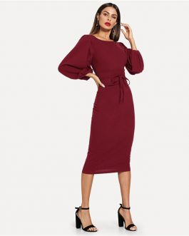 Women Tie Waist Long Lantern Sleeve Streetwear Dress