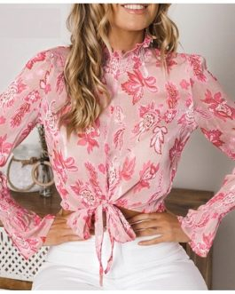 Chiffon Turtleneck Crop Elegant Long Sleeve Blouse