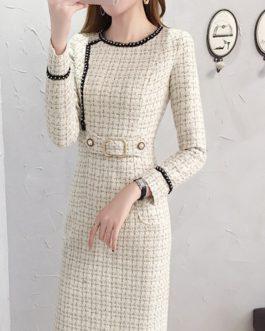 Elegant Woolen Office Lady Dress