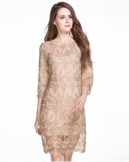 Elegant lace embroidery Plus size short party dress