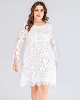 Plus size Elegant evening Party short lace dress