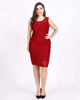 Plus size lace plus size bodycon Sexy party dress