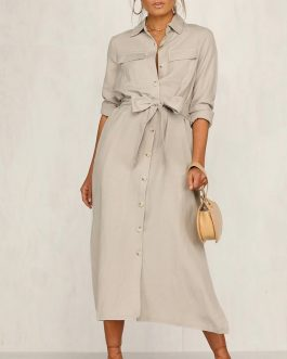 Streetwear Lapel Bow Loose Dress