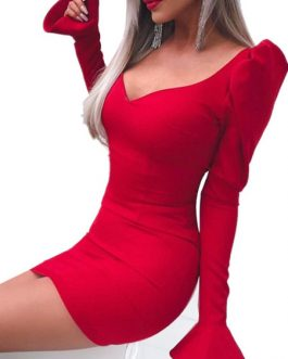 Sweetheart Neck Body Conscious Dress
